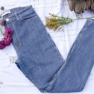 American Apparel Railroad Stripe Ankle-Zip Jeans